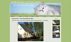 Screenshoot von www.katzen-vom-zwoschwitzer-weg.de